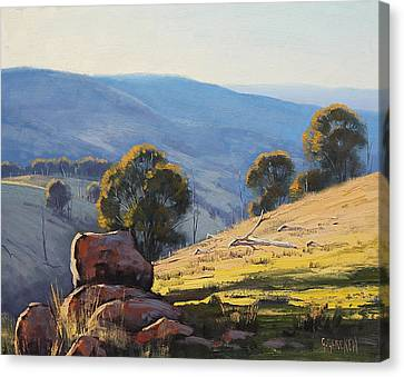 Afternoon Light Turon Hills Canvas Print by Graham Gercken