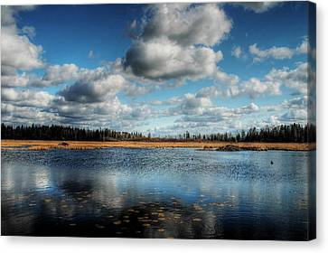 Afternoon Reflections At The Marsh Canvas Print by Heather  Rivet