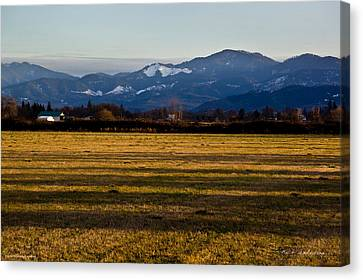 Afternoon Shadows Across A Rogue Valley Farm Canvas Print by Mick Anderson
