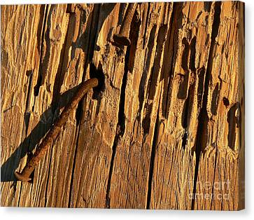 Canvas Print featuring the photograph Against The Grain by Lin Haring