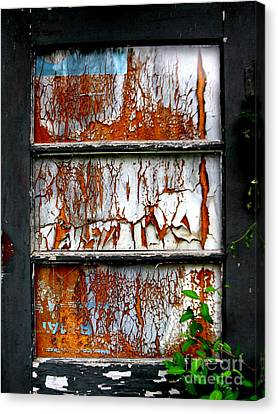 Aged Door Canvas Print