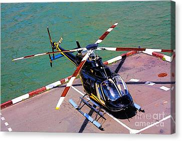 Airborne Canvas Print by Rogerio Mariani