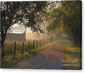 Alabama Morning Canvas Print by Don F  Bradford