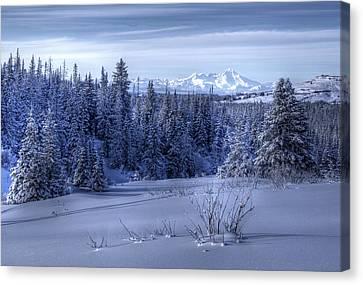 Alaskan Winter Landscape Canvas Print by Michele Cornelius