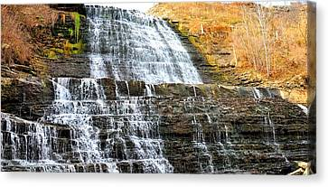 Albion Falls  Canvas Print by Puzzles Shum
