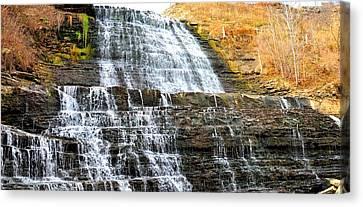 Albion Falls  Canvas Print