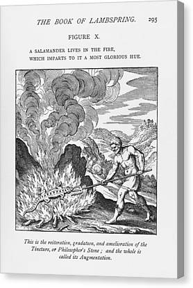 Alchemy Canvas Print by Science, Industry & Businessnew York Public Library
