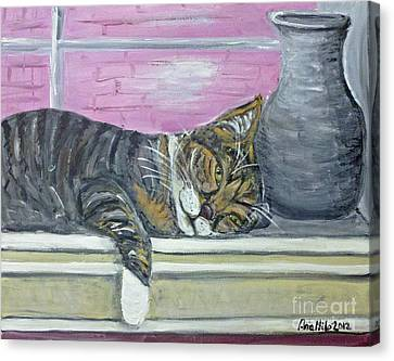 Alex On Windowsill  Canvas Print by Ania M Milo