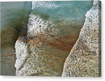 Algal Bloom Canvas Print by Peter Chadwick