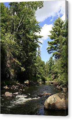 Algonquin Odes Three Canvas Print by Alan Rutherford