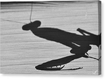 Alien Shadow Canvas Print