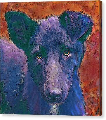 All American Mutt Canvas Print
