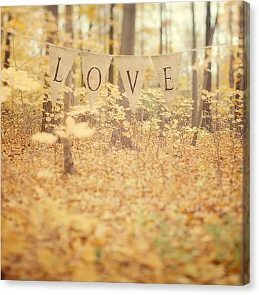 All Is Love Canvas Print by Irene Suchocki
