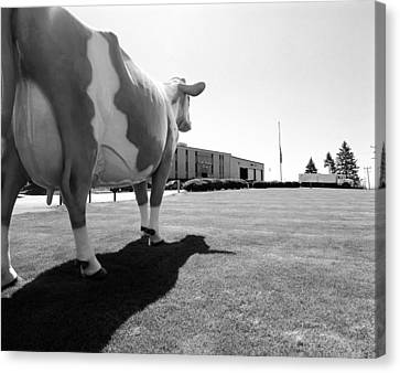 All We Have We Owe To Udders Canvas Print by Jan W Faul