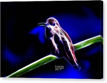Allens Hummingbird - Fractal Canvas Print by James Ahn