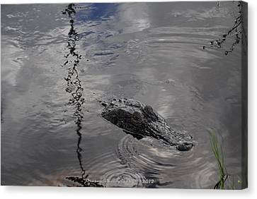 Alligator Alley Mascot  Canvas Print by G Adam Orosco