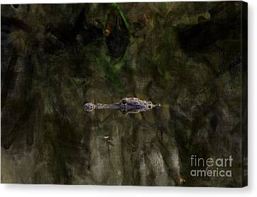 Canvas Print featuring the photograph Alligator In Swamp by Dan Friend