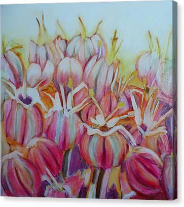 Allium Flower Canvas Print by Sandrine Pelissier