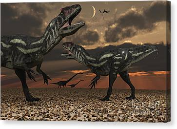 Allosaurus Dinosaurs Stalk Their Next Canvas Print by Mark Stevenson