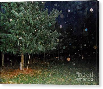 Almost Like Christmas Canvas Print by Doug Kean