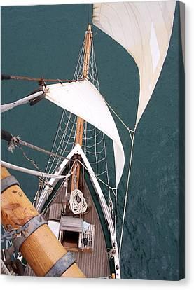 Aloft Canvas Print by David Barringhaus