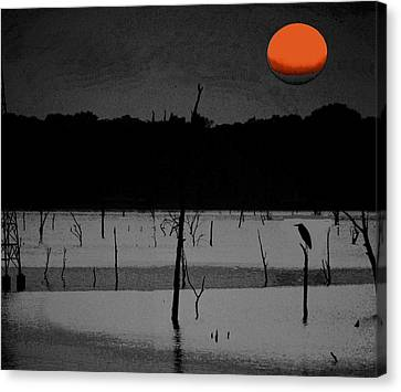 Alone Canvas Print by Carrie OBrien Sibley