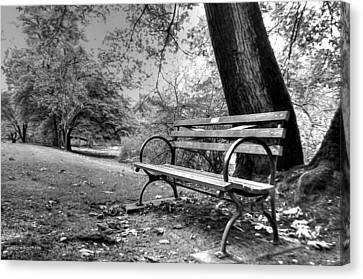 Alone In The Park Canvas Print by Sarai Rachel