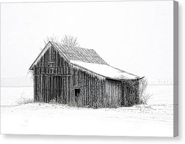 Canvas Print featuring the photograph Alone In The Snow by Mary Timman