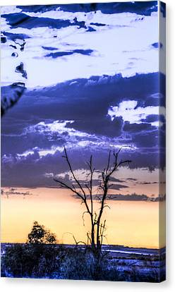 Canvas Print featuring the photograph Alone by Marta Cavazos-Hernandez