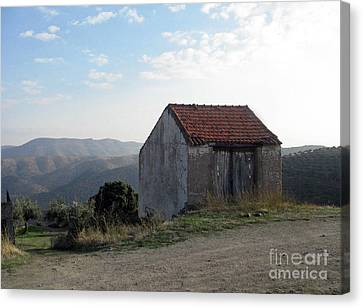 Canvas Print featuring the photograph Alone On The Hill by Arlene Carmel