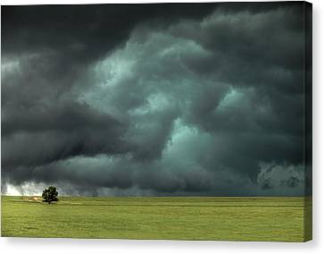 Alone Canvas Print by Thomas Zimmerman