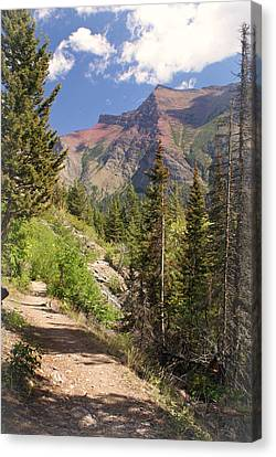 Along St. Mary's Lake Trail Canvas Print by Marty Koch