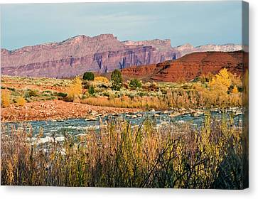Canvas Print featuring the photograph Along The Colorado River by Geraldine Alexander