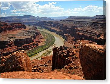 Along The White Rim Road Canvas Print by Marty Koch