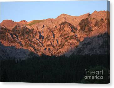 Alpenglow Canvas Print by Marta Alfred