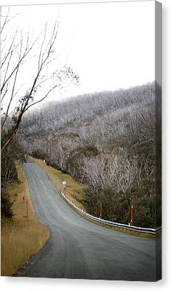 Alpine Way Road Near Thredbo Australia Canvas Print