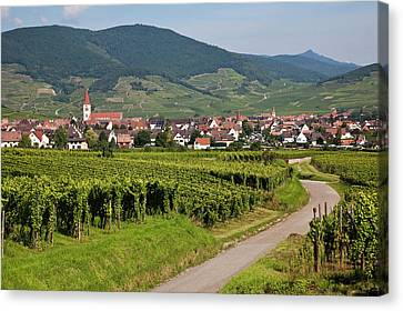 Alsace, France. Canvas Print by Buena Vista Images
