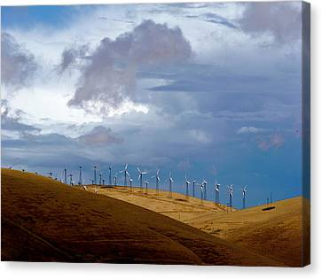 Altamont Pass California Canvas Print by Amelia Racca