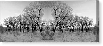Altered Series - Bare Double Canvas Print by Kathleen Grace