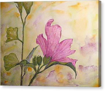 Althea Canvas Print - Althea by Stella Schaefer