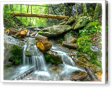 Alum Cave Bluff Trail Canvas Print by Debra and Dave Vanderlaan
