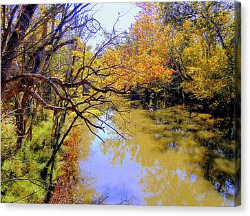 Alum Creek Canvas Print by Mindy Newman