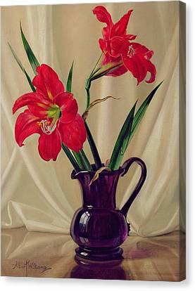 Amaryllis Lillies In A Dark Glass Jug Canvas Print by Albert Williams