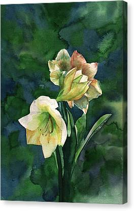 Canvas Print featuring the painting Amaryllis by Sharon Mick