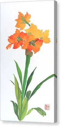 Amaryllis Canvas Print by Yolanda Koh
