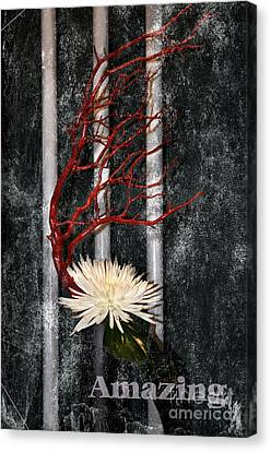 Canvas Print featuring the photograph Amazing by Tamera James
