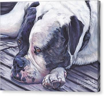 American Bulldog  Canvas Print by Lee Ann Shepard