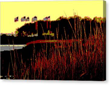 American Flags2 Canvas Print