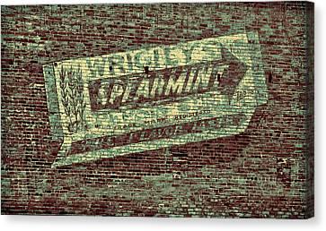 Americana Gum On Brick Canvas Print by Tony Grider