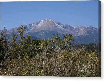 Americas Mountain Canvas Print by Marta Alfred